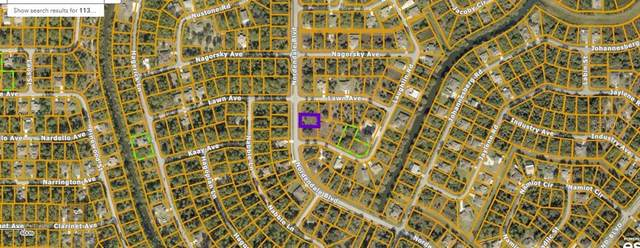 Nordendale Boulevard, North Port, FL 34288 (MLS #C7444995) :: Globalwide Realty