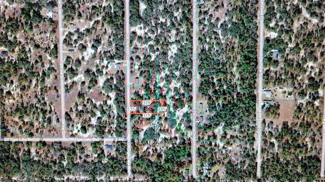 Sw Hyacinth Court, Dunnellon, FL 34431 (MLS #C7445113) :: Frankenstein Home Team