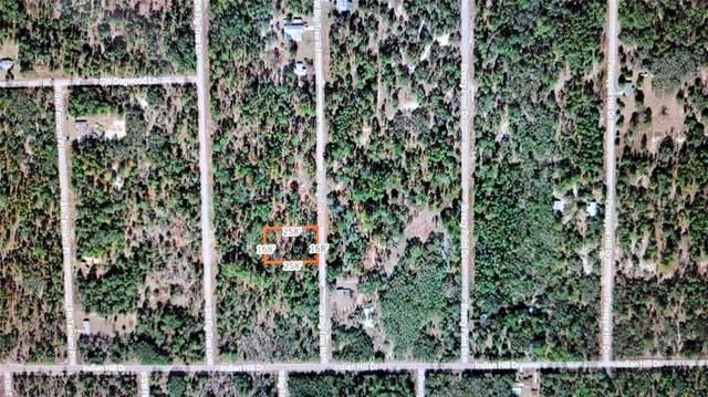 SW Big Tree Road, Dunnellon, FL 34431 (MLS #C7445117) :: Armel Real Estate
