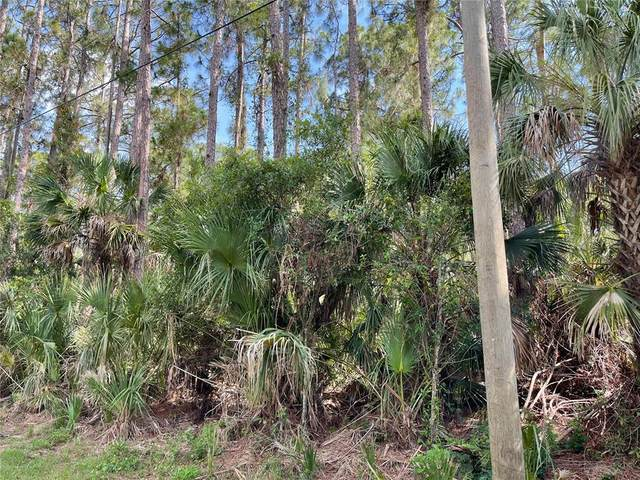 Hyannis Avenue, North Port, FL 34286 (MLS #C7445119) :: Coldwell Banker Vanguard Realty