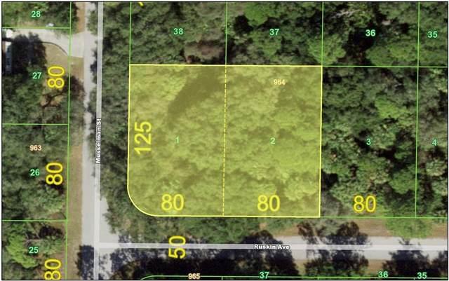 19064 & 19072   RUSKIN AVE, Port Charlotte, FL 33954 (MLS #C7445163) :: Zarghami Group