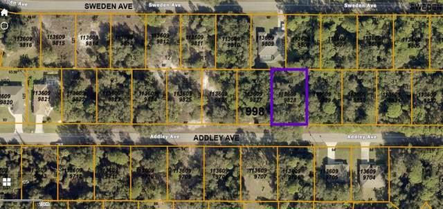 Addley Avenue, North Port, FL 34288 (MLS #C7445235) :: Frankenstein Home Team