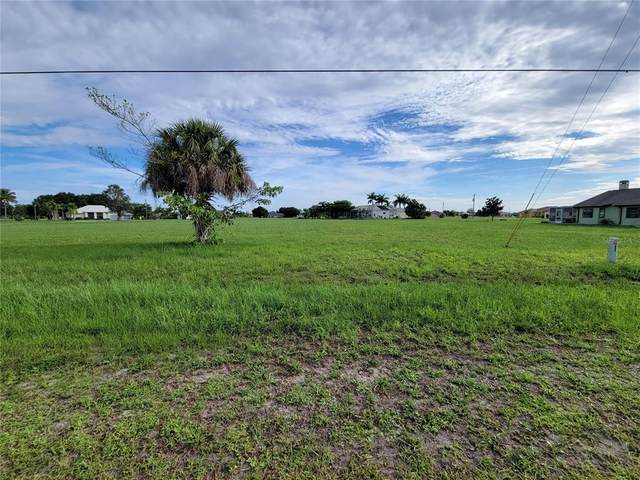 24340 Nicobar Lane, Punta Gorda, FL 33955 (MLS #C7445278) :: Prestige Home Realty