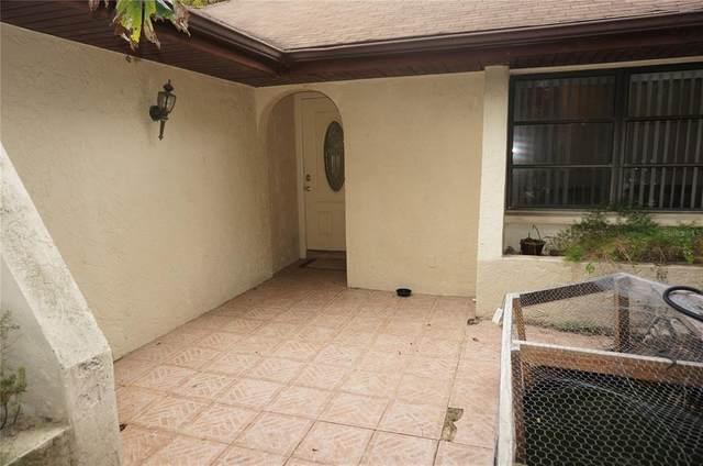3164 Depew Avenue, Port Charlotte, FL 33952 (MLS #C7445348) :: Your Florida House Team