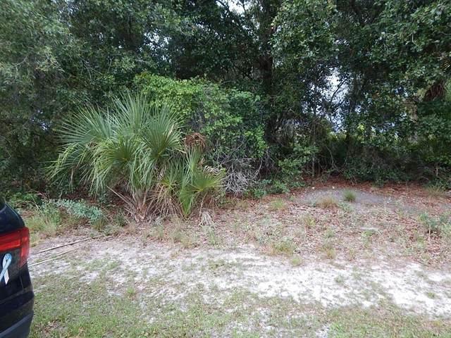 22482 Fortune Avenue, Port Charlotte, FL 33954 (MLS #C7445378) :: Everlane Realty