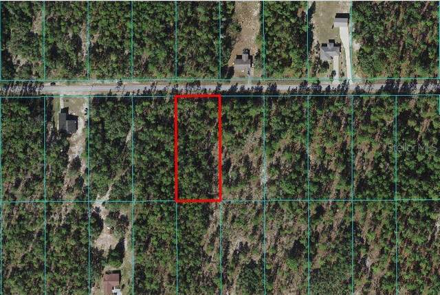 Sw Beaver Drive, Dunnellon, FL 34431 (MLS #C7445409) :: Zarghami Group