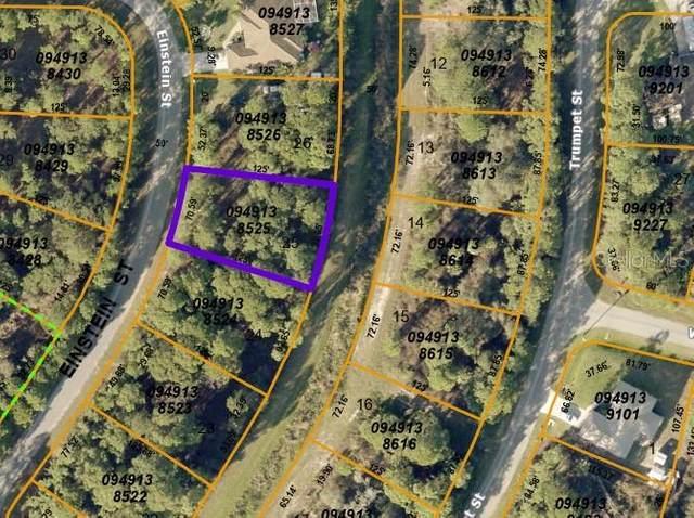 Lot 25 Einstein Street, North Port, FL 34291 (MLS #C7445816) :: Griffin Group
