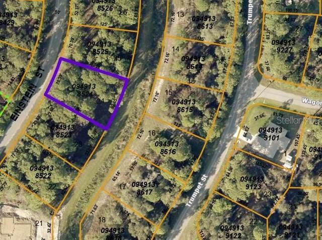 Lot 24 Einstein Street, North Port, FL 34291 (MLS #C7445820) :: Griffin Group