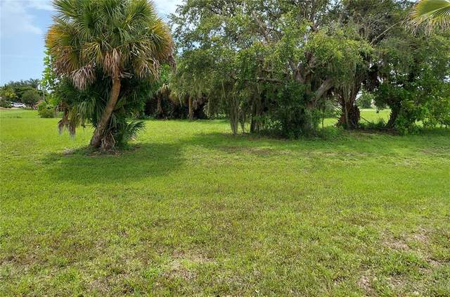 16349 Cape Horn Boulevard, Punta Gorda, FL 33955 (MLS #C7445972) :: Baird Realty Group