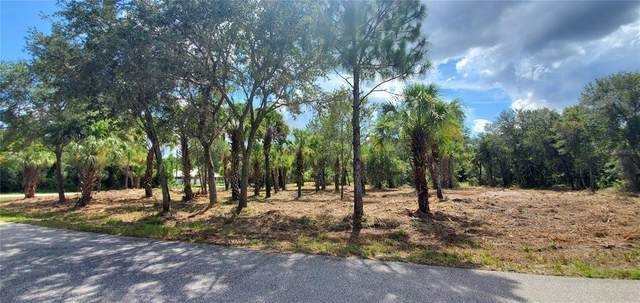 379 & 389 Troutdale Street, Port Charlotte, FL 33954 (MLS #C7445984) :: Rabell Realty Group