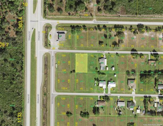 30035 Beech Road, Punta Gorda, FL 33982 (MLS #C7446124) :: RE/MAX Local Expert