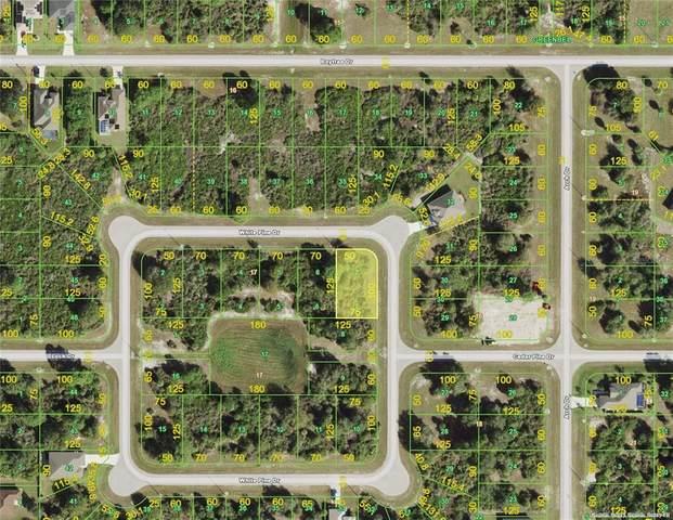 127 White Pine Drive, Rotonda West, FL 33947 (MLS #C7446129) :: Realty Executives