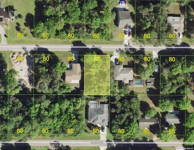 22461 Adorn Avenue, Port Charlotte, FL 33952 (MLS #C7446299) :: Everlane Realty
