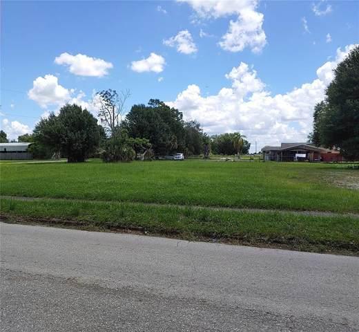 N Mills Avenue, Arcadia, FL 34266 (MLS #C7446335) :: Zarghami Group