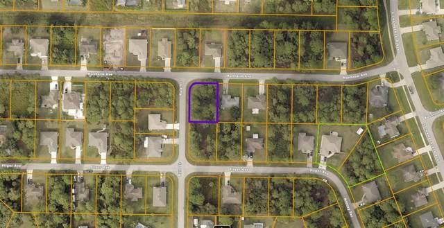 Manheim Avenue, North Port, FL 34286 (MLS #C7446344) :: The Price Group