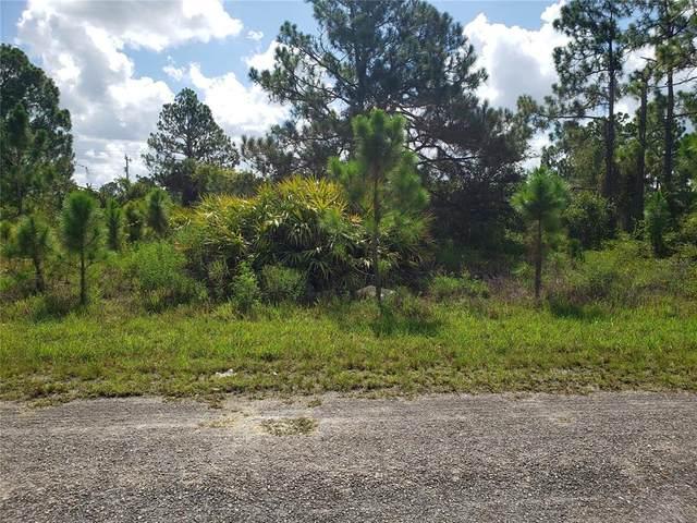 845 Burbank Avenue S, Lehigh Acres, FL 33974 (MLS #C7446346) :: The Price Group