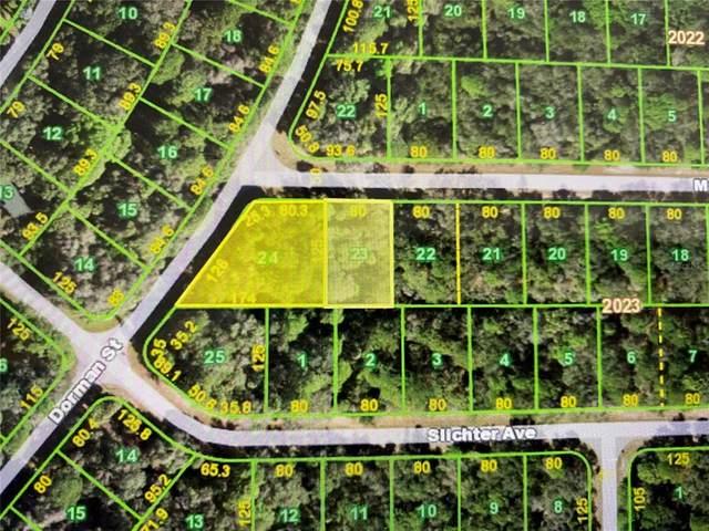 14107 & 14097 Massey Avenue, Port Charlotte, FL 33953 (MLS #C7446496) :: Everlane Realty
