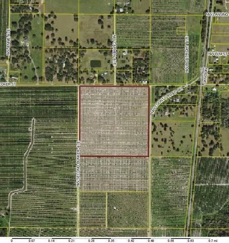 NW Second Bunker Avenue, Arcadia, FL 34266 (MLS #C7446509) :: Zarghami Group