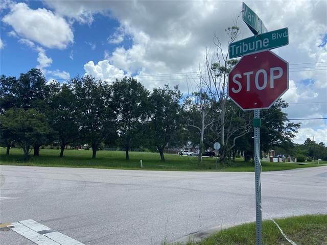27374 Tribune Boulevard, Punta Gorda, FL 33955 (MLS #C7446546) :: MavRealty