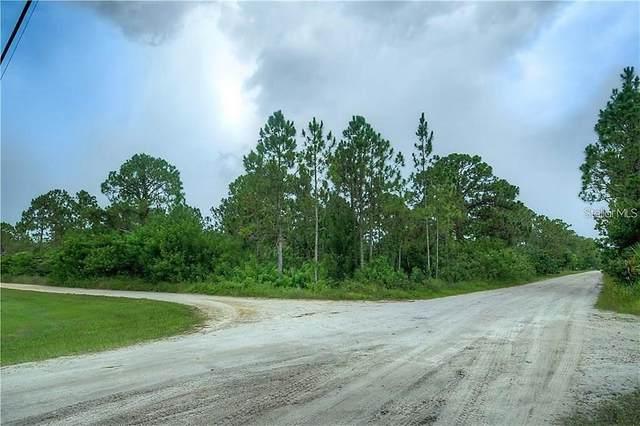 29357 Ameropa Drive, Punta Gorda, FL 33982 (MLS #C7446556) :: Young Real Estate