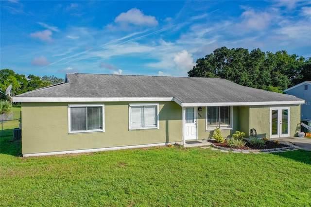 2701 Shenandoah Street, North Port, FL 34287 (MLS #C7446591) :: Zarghami Group