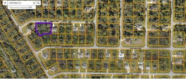 Gimlet Avenue, North Port, FL 34291 (MLS #C7446674) :: RE/MAX Marketing Specialists