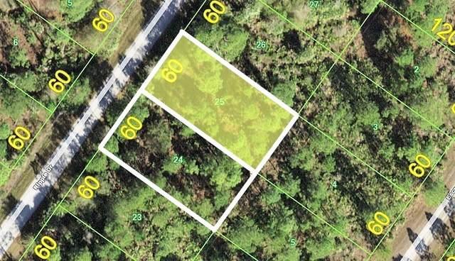 12202 & 12208 Ripple Drive, Punta Gorda, FL 33955 (MLS #C7446689) :: EXIT Gulf Coast Realty
