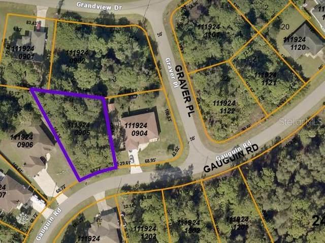 Gauguin Road, North Port, FL 34288 (MLS #C7446700) :: Bustamante Real Estate