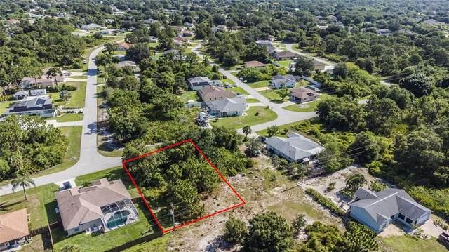 11205 Watercrest Avenue, Port Charlotte, FL 33981 (MLS #C7446703) :: Prestige Home Realty