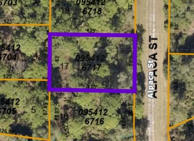 Alpaca Street, North Port, FL 34291 (MLS #C7446728) :: Premium Properties Real Estate Services