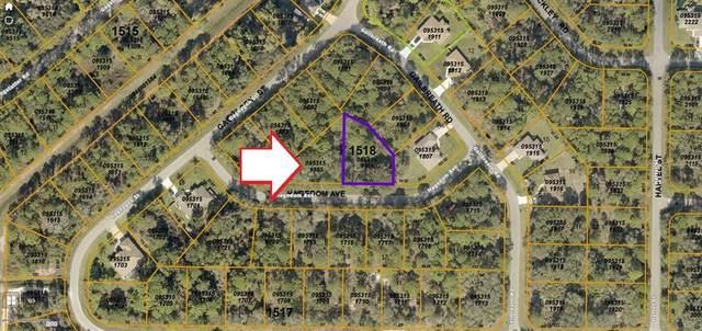 LOT 6 06 HAGEDOM Avenue, North Port, FL 34291 (MLS #C7446745) :: MavRealty