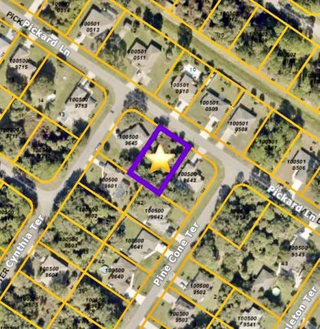Pickard Lane, North Port, FL 34286 (MLS #C7446750) :: Sarasota Property Group at NextHome Excellence