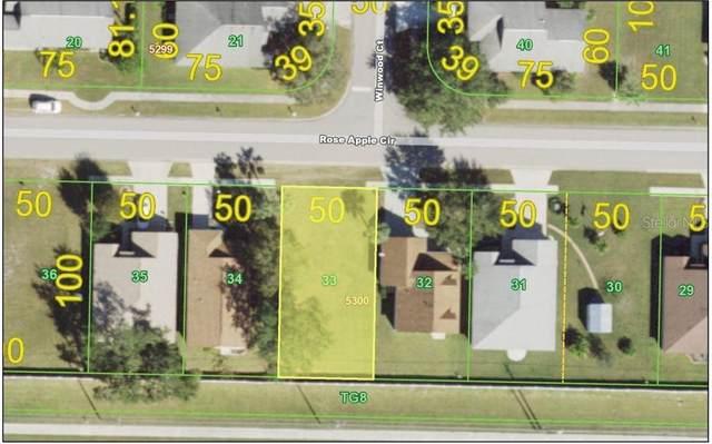 528 Rose Apple Circle, Port Charlotte, FL 33954 (MLS #C7446924) :: Lockhart & Walseth Team, Realtors