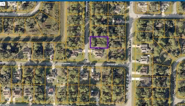 Gainsboro Street, North Port, FL 34291 (MLS #C7446980) :: Gate Arty & the Group - Keller Williams Realty Smart
