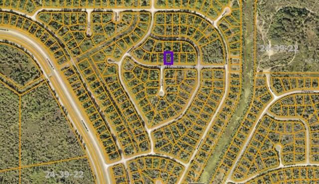Ledum Avenue, North Port, FL 34288 (MLS #C7447015) :: Gate Arty & the Group - Keller Williams Realty Smart