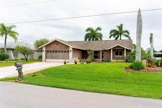 9412 Galaxie Circle, Port Charlotte, FL 33981 (MLS #C7447030) :: Everlane Realty
