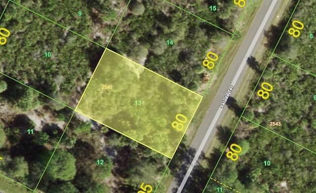 201 Saluda Terrace, Port Charlotte, FL 33953 (MLS #C7447033) :: Everlane Realty