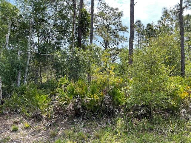 13319 Sulky Drive, Punta Gorda, FL 33955 (MLS #C7447039) :: Cartwright Realty