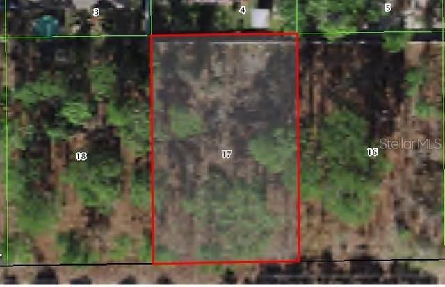 1399 W Cary Drive, Citrus Springs, FL 34434 (MLS #C7447040) :: Everlane Realty