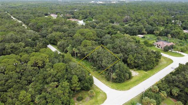 17226 Alvin Avenue, Port Charlotte, FL 33948 (MLS #C7447425) :: Gate Arty & the Group - Keller Williams Realty Smart