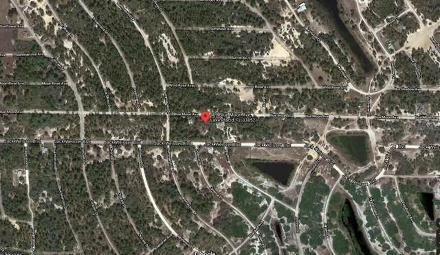 409 Blue Moon Avenue, Lake Placid, FL 33852 (MLS #C7447649) :: The Paxton Group