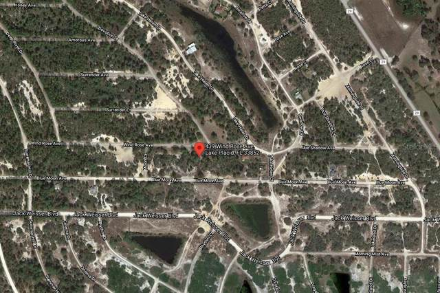 439 Wind Rose Avenue, Lake Placid, FL 33852 (MLS #C7447658) :: The Paxton Group
