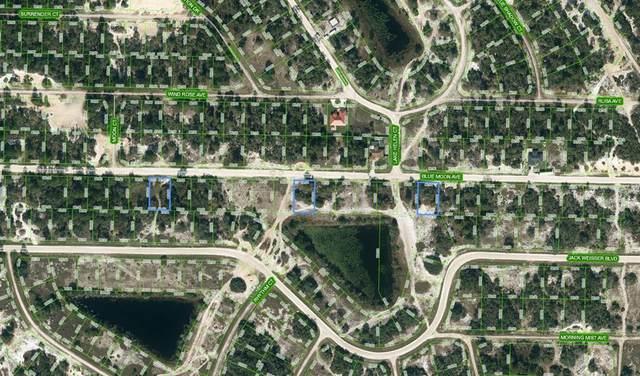 429 Blue Moon Avenue, Lake Placid, FL 33852 (MLS #C7447664) :: Team Turner