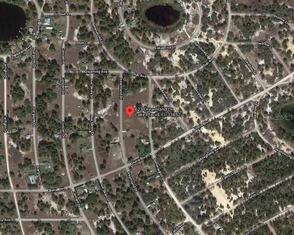 623 Dreamland Drive, Lake Placid, FL 33852 (MLS #C7447668) :: Team Turner