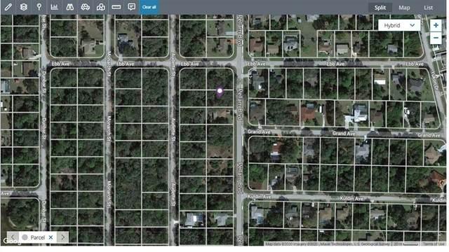 3399 Pellam, Port Charlotte, FL 33948 (MLS #C7447822) :: Your Florida House Team