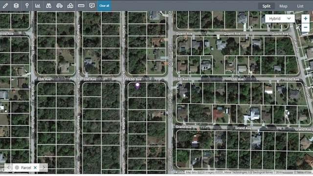 18473 Ebb Avenue, Port Charlotte, FL 33948 (MLS #C7447825) :: Your Florida House Team