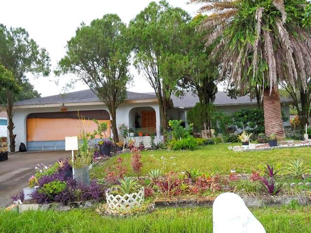 4029 Holin Lane, North Port, FL 34287 (MLS #C7447847) :: Team Turner