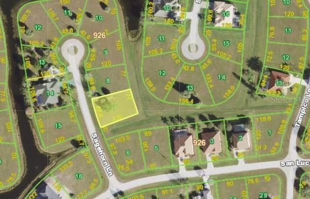 17290 Sagehorn Lane, Punta Gorda, FL 33955 (MLS #C7447860) :: Team Turner