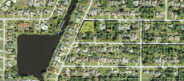 23125 Hemenway Avenue, Port Charlotte, FL 33980 (MLS #C7447988) :: Team Turner