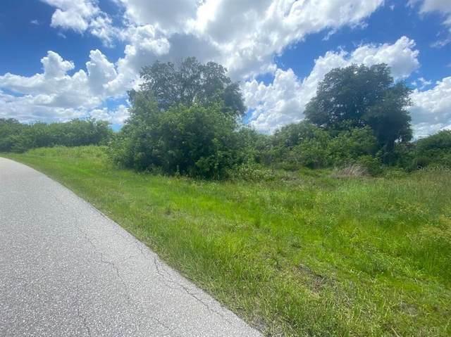 13395 Kaplan Terrace, Port Charlotte, FL 33981 (MLS #C7448113) :: Team Turner